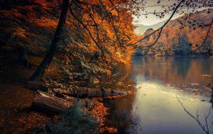 Herbstschlag